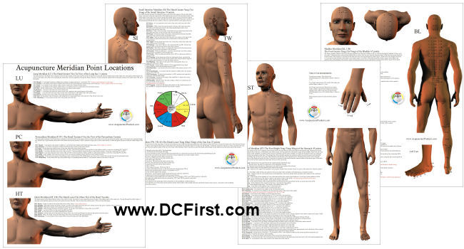 Acupuncture Point Locations Charts