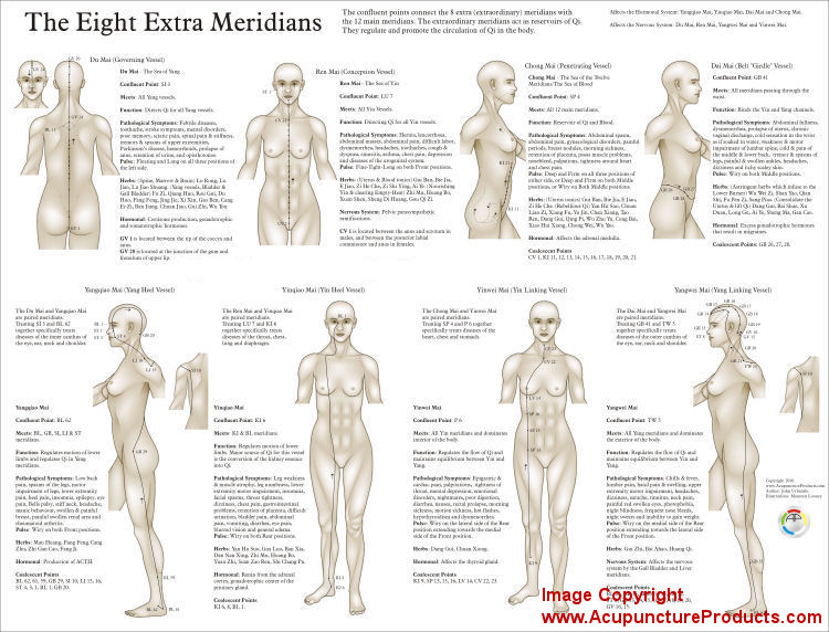 The Eight Extra  Meridians Poster