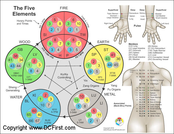 Applied Kinesiology Five Element Points