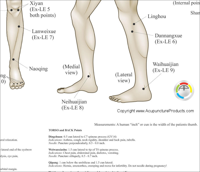 Extraordinary Acupuncture Points