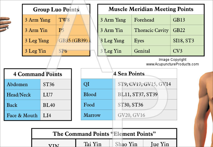 Acupuncture Meridian Points and Classifications