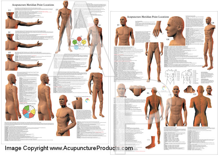 Acupuncture Point Location Reference Posters